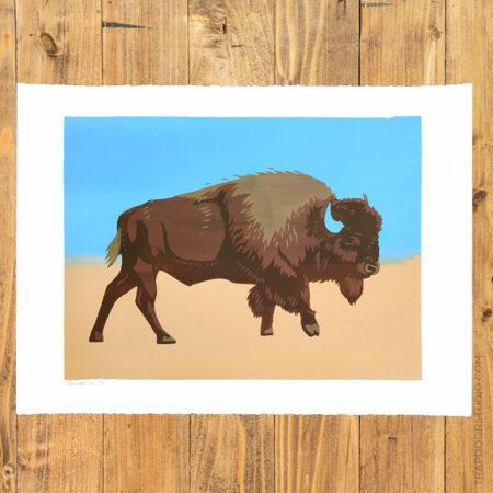 Bison-2016-1