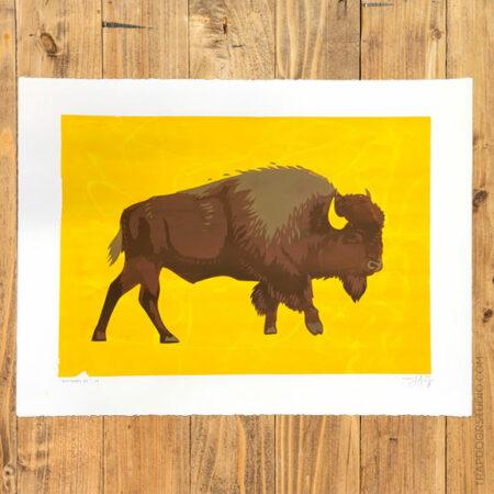 Bison-2016-2